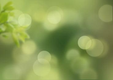 Green Blur Background Photos Vectors And Psd Files For Free Download Pngtree