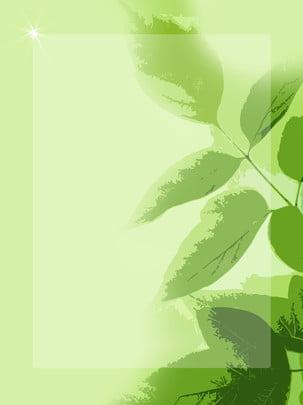 綠葉文藝唯美簡約背景 , 綠葉, 文藝, 唯美 背景圖片