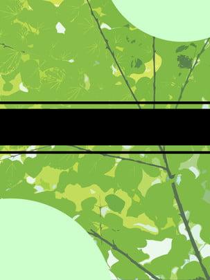 綠葉平鋪文藝唯美簡約背景 , 綠色, 平鋪, 文藝 背景圖片