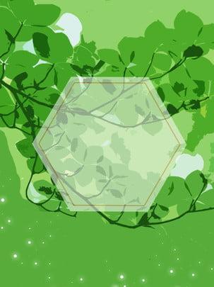 綠葉平鋪文藝唯美簡約背景 , 綠葉, 平鋪, 文藝 背景圖片