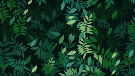 green leaves branches fallen zero background, Green, Leaves, Branch Background image