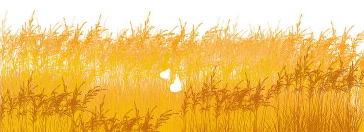 豐收麥田麥穗和蝴蝶背景, 豐收, 麥田, 蝴蝶 背景圖片