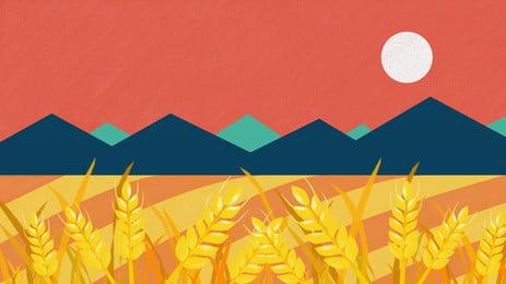 núi huayuan vật liệu nền lúa mì, Nhiệt Lớn, Thuật Ngữ Mặt Trời, Trưởng Thành Ảnh nền