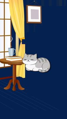 इनडोर बिल्ली डेस्क पृष्ठभूमि सामग्री , किट्टी, टेबल्स, खिड़की पृष्ठभूमि छवि