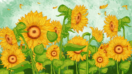 彩繪秋季向日葵花朵背景素材, 向日葵, 花機, 花朵 背景圖片