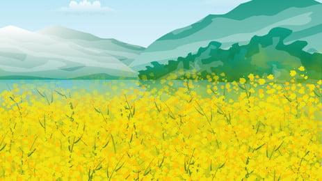 चित्रित रेपसीड समुद्री यात्रा की पृष्ठभूमि, फूलों का समुद्र, यात्रा, यात्रा की पृष्ठभूमि पृष्ठभूमि छवि
