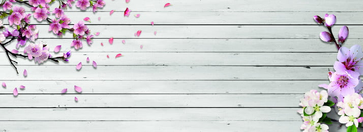 फर्श पर आड़ू चेरी पीच, चेरी का फूल, आड़ू का फूल, बैनर पृष्ठभूमि छवि