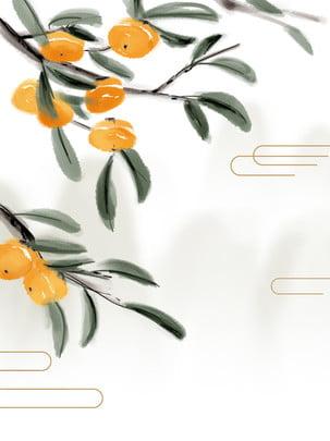 Persimmon phong cách trung quốc cảnh thực vật truyền thống mùa thu lá minh họa Minh Họa Vẽ Hình Nền