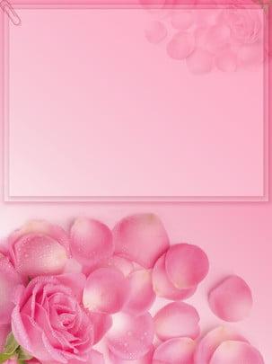 Pink valentine hoa hồng nền lãng mạn minh họa Màu hồng Giấc mơ Hoa Hè Phù Nhân Hình Nền