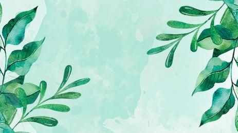 folhas de plano fundo do modelo ppt, Fundo Ppt, Modelo Ppt, Folha Verde Imagem de fundo