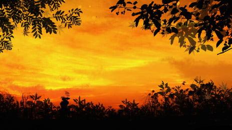 latar belakang siluet matahari terbenam merah dengan daun, Merah, Pada Waktu Matahari Terbenam, Daun imej latar belakang