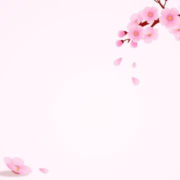imagem principal de fundo romântico flor cerejeira , Cosméticos, Romântico, Flor De Pêssego Imagem de fundo