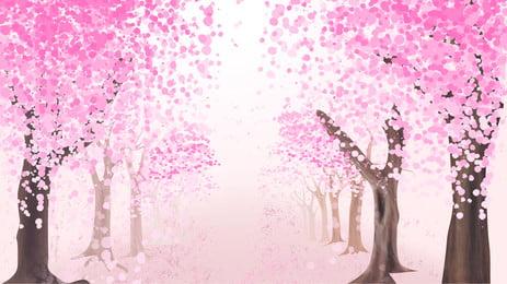 lãng mạn quảng cáo nền cây hoa anh đào, Quảng Cáo Nền, Cây, Hoa Anh đào Ảnh nền