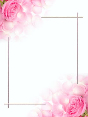 romantic pink rose star festival valentines day background , Pink, Rose, Romantic Background image