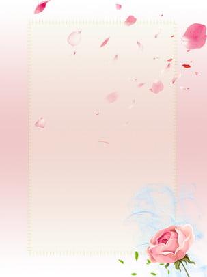 玫瑰綠色葉子粉色浪漫背景 , 玫瑰, 葉子, 粉色 背景圖片