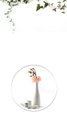 flor literaria simple por la mañana buen material de fondo , Fondo De Flor De Vid, Buenos Dias De Fondo, La Flor Imagen de fondo