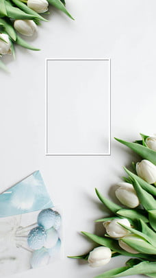 materi latar belakang bunga ibu yang sederhana , Sempadan, Bunga, Latar Belakang Ibu imej latar belakang