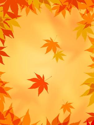 Mùa thu mềm lá phong phổ vàng rụng Bối Cảnh Màu Hình Nền