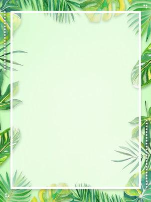 fundo de folhas verdes verão sai hd , Folha Verde, Literário, Verde Imagem de fundo