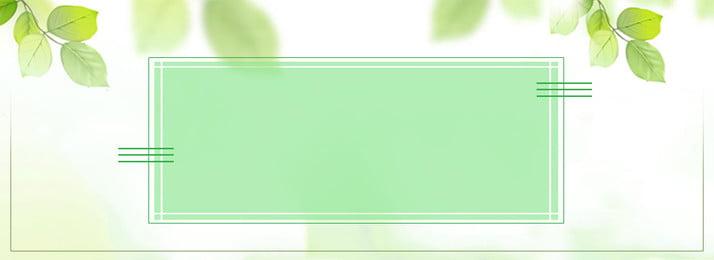 ग्रीष्मकालीन न्यूनतम ताजा हरी पत्ती पोस्टर पृष्ठभूमि गर्मी सरल ताज़ा ग्रीन वायरफ़्रेम लाइन ग्रीष्मकालीन न्यूनतम ताजा पृष्ठभूमि छवि