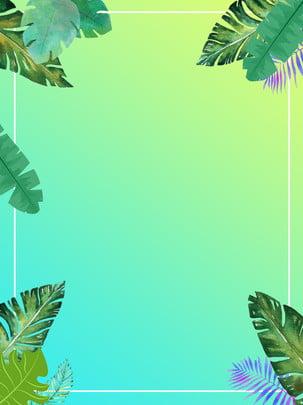 summer refreshing poster background illustration , Summer, Poster Background Illustration, Refreshing Background image