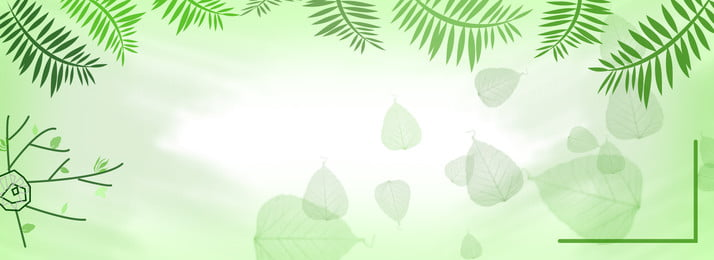 latar belakang hijau pokok, Warna Lembut, Pokok, Hijau imej latar belakang