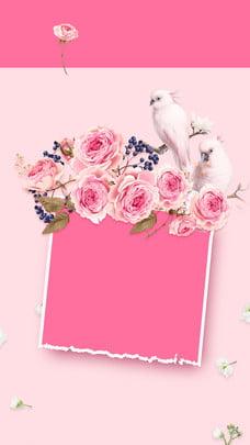 Màu hồng ấm áp tạ ơn vật liệu nền Màu hồng Con chim Trắng Lễ ơn Hình Nền