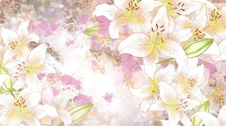 जल रंग सफेद लिली रंग सफेद लिली हाथ खींचा हुआ पृष्ठभूमि सुंदर पृष्ठभूमि छवि