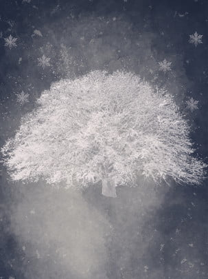 冬の雪景色スノーシーダー氷霧 冬 雪のシーン スノーフレーク 背景画像