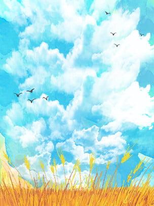 青い空、田んぼ、広告の背景 , 広告の背景, 新鮮な, 青い空 背景画像