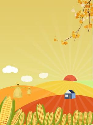 người nông dân trung quốc thiết kế nền harvest festival , Harvest Festival, Lễ Hội Thu Hoạch Nền, Lúa Mì Ảnh nền