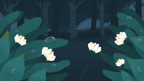 Холодная роса лес цветы и растения справочные материалы Традиционные солнечные термины Холодная термины Холодная Холодная Фоновое изображение