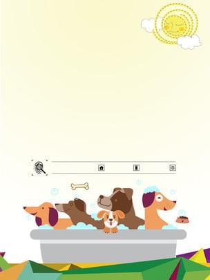 可愛陽光下的寵物廣告背景 , 廣告背景, 動物, 泳池 背景圖片