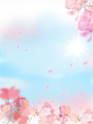 清雅粉色花瓣廣告背景 , 廣告背景, 花朵, 粉色 背景圖片