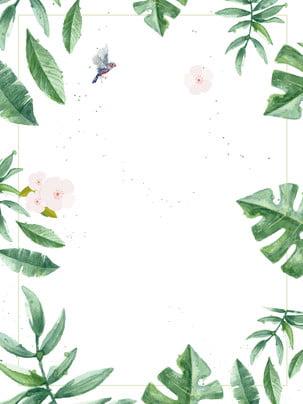 fundo de publicidade botânica desenhada mão fresca , Fundo De Publicidade, Fresco, Mão Desenhada Imagem de fundo