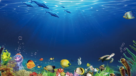 Fondo de publicidad de Fresh Ocean World Fondo publicitario Agua de Mano Pez Fondo Imagen De Fondo
