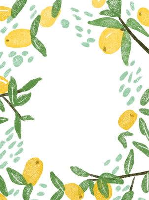Fresco textura 琵琶 fruta ilustração fundo Fundo De Frutas Imagem Do Plano De Fundo