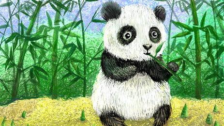 जामुन खाने वाले विशालकाय पांडा कार्टून पृष्ठभूमि, बाँस का जंगल, विशालकाय पांडा, ग्रीन पृष्ठभूमि छवि