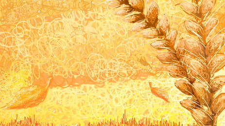 金黃的麥田手繪卡通背景, 黃色, 田野, 手繪 背景圖片