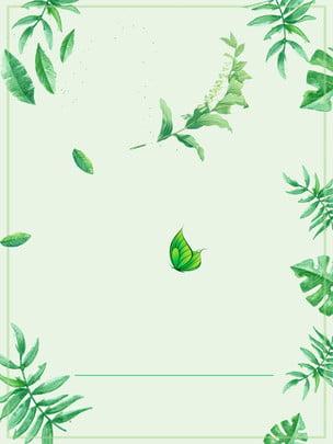 綠色樹葉廣告背景 , 廣告背景, 綠色, 樹葉 背景圖片