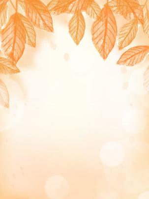 Mão desenhada outono amarelo dourado deixa o fundo do ponto de luz folhas Fundo De Outono Imagem Do Plano De Fundo