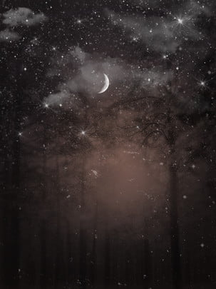 night forest starry sky moonlight , Forest Night, Mysterious, Fantasy Background image
