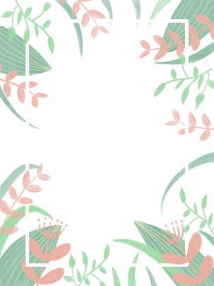 植物邊框背景 , 植物, 邊框, 綠色 背景圖片