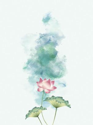식물 연꽃 잎 , 식물, 연꽃, 연꽃 잎 배경 이미지