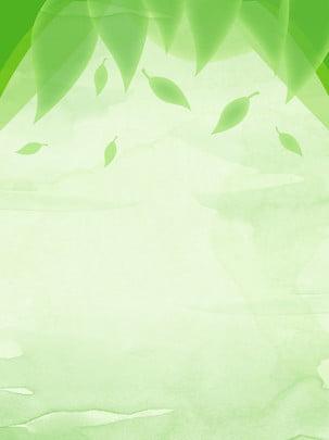màu xanh lá cây thuần khiết nền tối giản , Nền Tối Giản, Nền Xanh, Lá Nền Ảnh nền