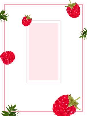 pure raspberry fruit minimalistic background , Hand Painted, Fruit, Lovely Background image