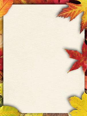 Simple maple leaf background , Leaves, Maple Leaf, Fallen Leaves Background image