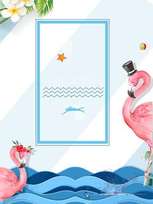 fundo de publicidade flamingo piscina verão , Fundo De Publicidade, Fresco, Flor Imagem de fundo