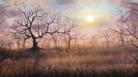 hutan matahari terbenam latar belakang landskap, Latar Belakang Hutan, Sunset Latar Belakang, Latar Belakang Landskap imej latar belakang