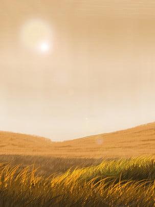 暖色草原背景圖片 , 光暈, 太陽, 橘黃色 背景圖片